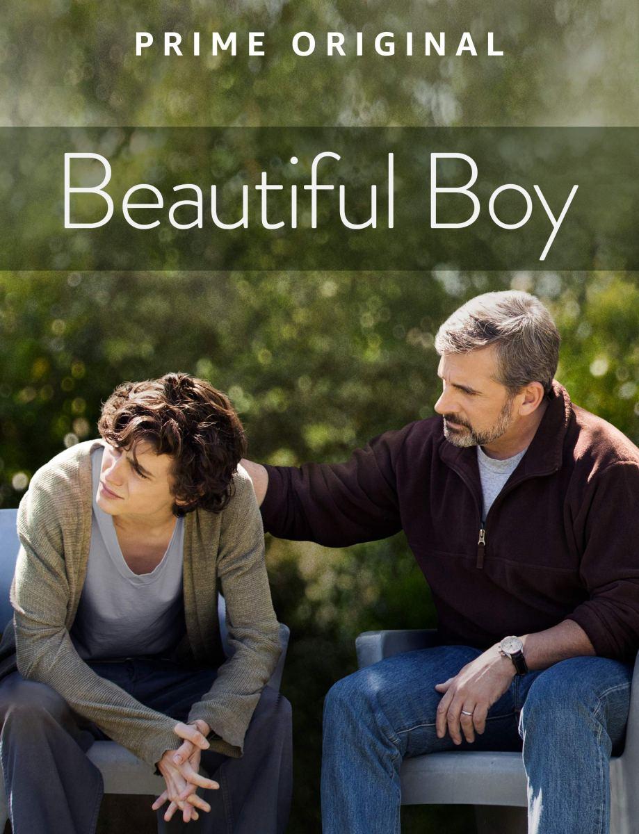 Beautiful Boy 2019
